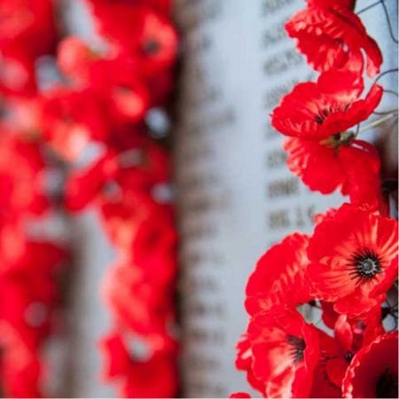 Image showing poppies for remembrance