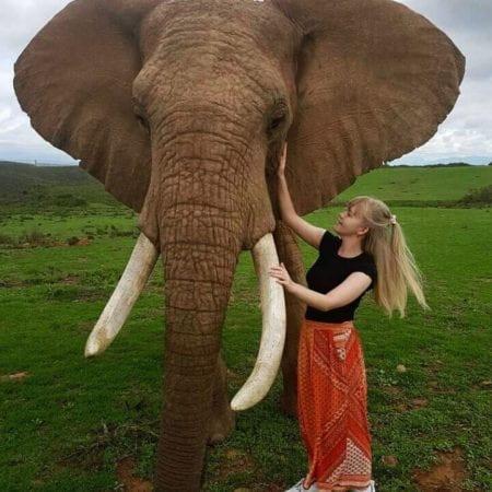 rebecca meets an elephant