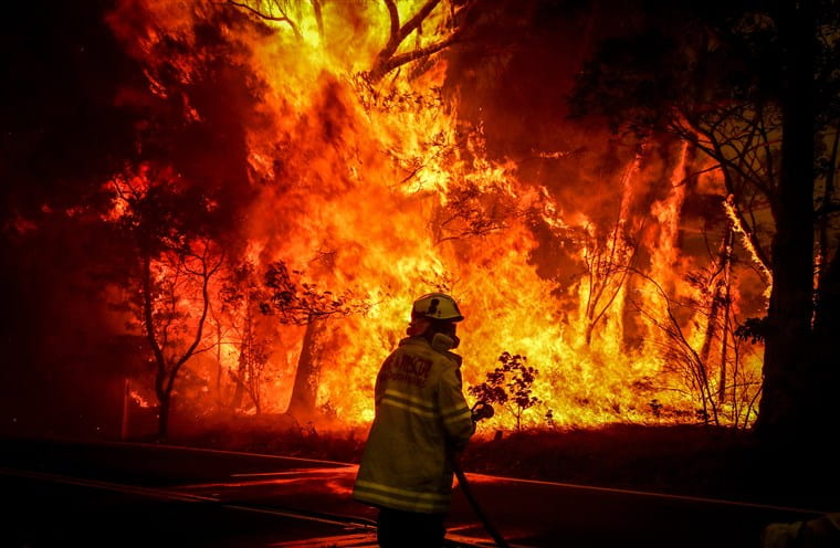 Red skies, burning towns and animal populations decimated – Australia continues to burn