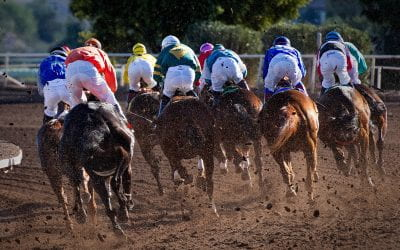 The Never-Ending Debate: Should Horse Racing be Stopped?