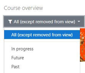 image showing drop-down menu options