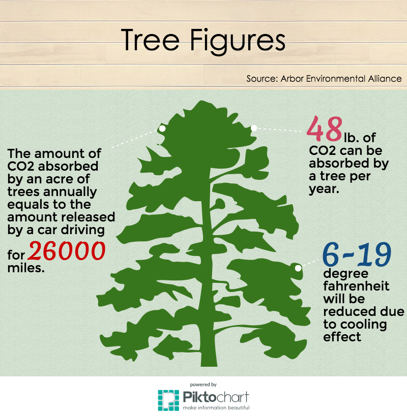 Tree figures. (Sources: Arbor Environmental Alliance)