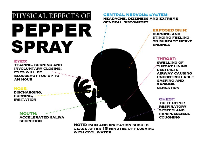The graphic above depicts the physical effects that pepper spray will have on the human body. On average the effects of pepper spray will last from 15-30 minutes and there are generally no long-term effects of using pepper spray. This information was obtained from Defense Express. Nicole Ares/DMJX