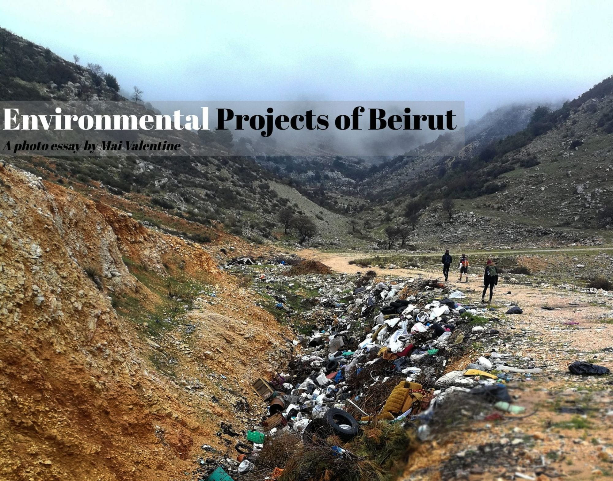 Environmental Projects of Beirut
