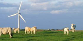 According to the Danish Energy Agency,  power generated from wind turbines accounted for almost 30% of domestic electricity supply. Photo: Danish Energy Agency