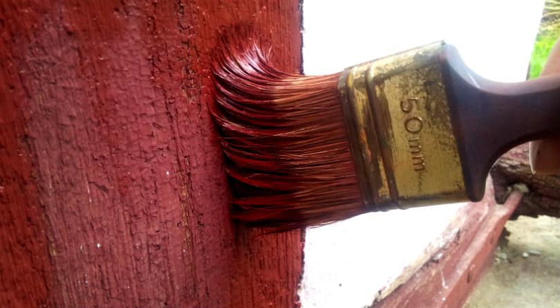 Velegnet pensel til fladerne, når man maler med kærnemælksmaling. 50 mm flad med svinehårsbørster. Foto: Sidse Stephensen