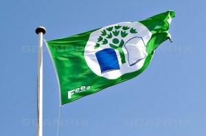 Grønt flag betyder grøn skole. Kilde: Scanpix