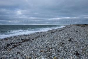 Nordsjællandsk strand og kyststrækning ved Rørvig, på en overskyet forårsdag.
