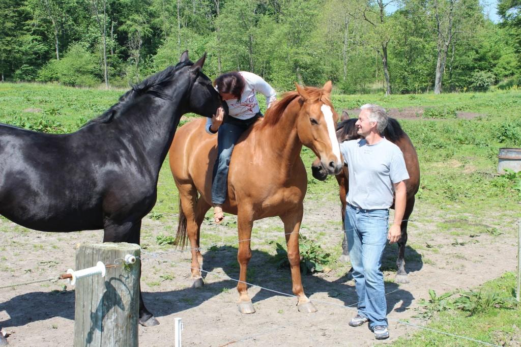 Rebekka Gadeberg og Allan Venzel med deres heste