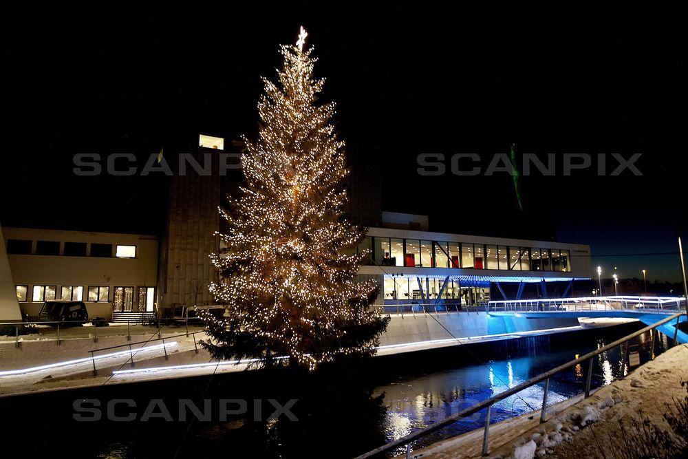 Pengene går bl.a. til udsmykning af Danmarks største juletræ i Storå. FOTO: Scanpix