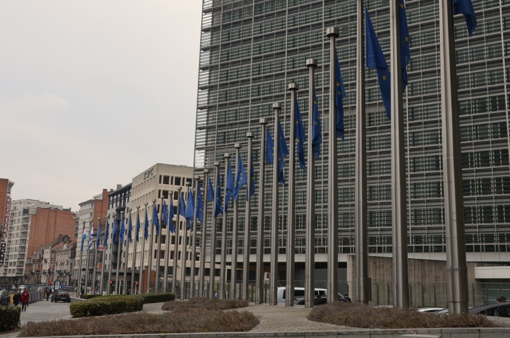 The regulation of nanomaterials falls under the authority of Enterprise and Industry, a branch of the European Commission. (Photo by Luc Rinaldi)
