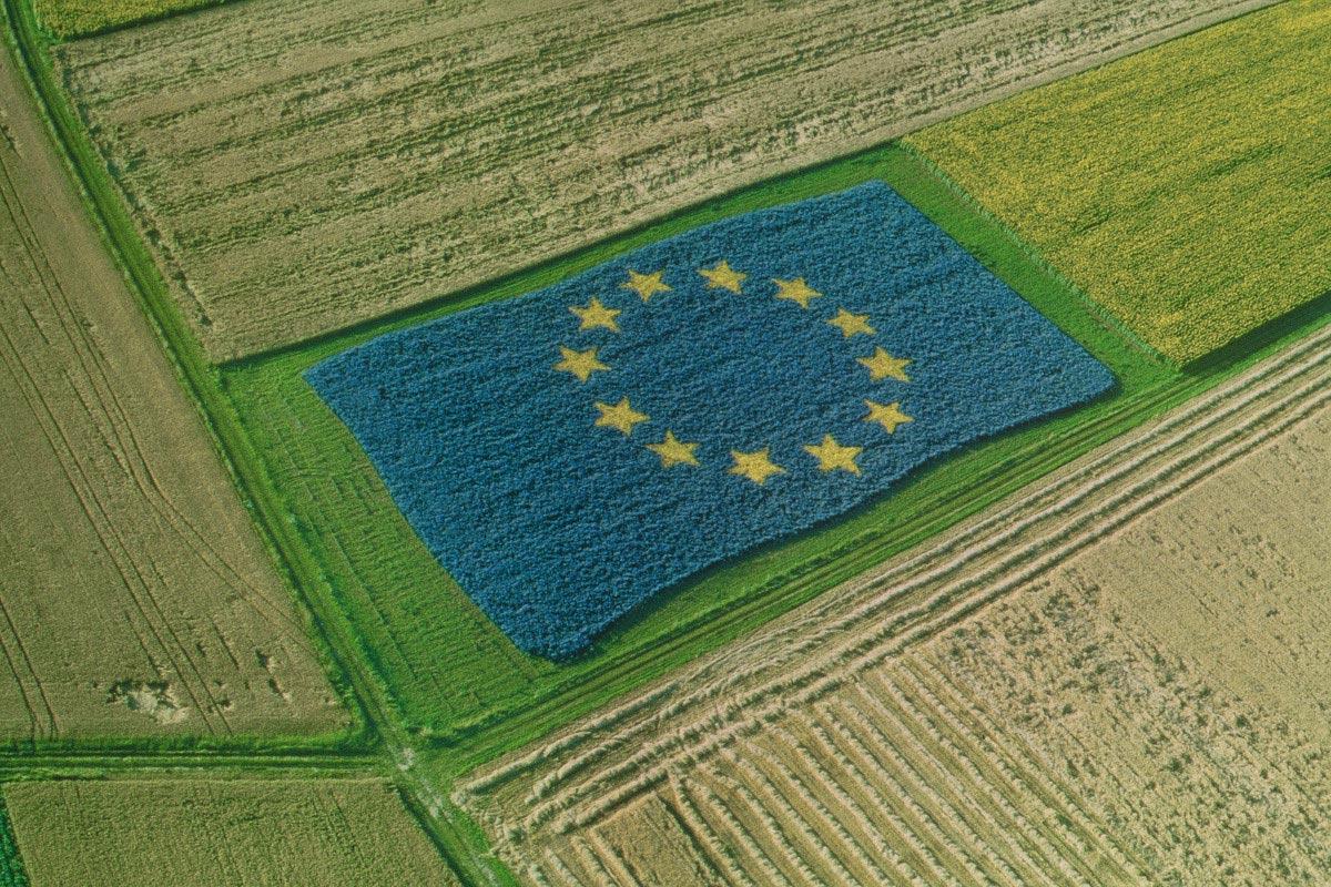 /European Union, 2013